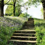 Sagesse et résignation une voie de l'acceptation et du lâcher prise